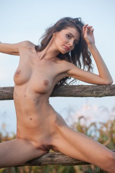 Skinny brunette posing in the field